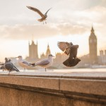 Where to stay in London: The 5 best luxury serviced apartments